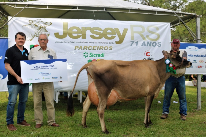 Lactalis patrocina concurso leiteiro e concurso de sólidos da raça Jersey na Expofeira de Pelotas