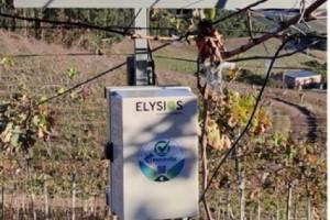 Viticultura de precisão: estação meteorológica facilita a tomada de decisões