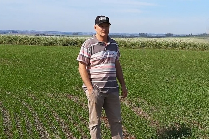 Adubação de precisão potencializa desempenho dos fertilizantes minerais