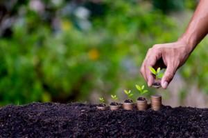 Renegociação pode minimizar endividamento do produtor rural