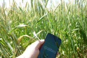 SulGesso lança APP para calcular quantidade de nutrientes necessária aos solos