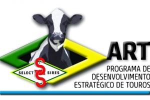 Genética Jersey de touro importado dos EUA chega ao mercado interno
