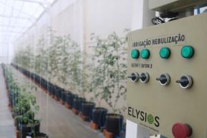 Elysios Agricultura Inteligente é uma das vencedoras do BRDE Labs 2020