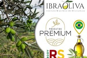 Inovação: Azeite de oliva gaúcho será alavancado pelo Programa Produtos Premium