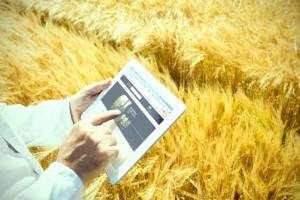 Startup lança marketplace focado no agronegócio com rede de franquias