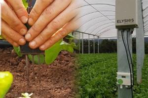 Agricultura 4.0 começa a ser realidade na agricultura familiar