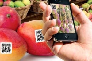 Digitalização da cadeia agrícola já é realidade Brasil afora