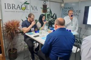 Ibraoliva alerta para procedência dos azeites reprovados pelo Ministério da Agricultura