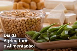 Agricultura sustentável é o caminho para alimentar o mundo