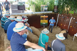 Benefícios do sulfato de cálcio granulado vira atração no Campo Demonstrativo da Cooperalfa em Bela Vista do Toldo (SC)