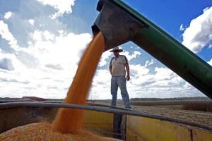 Produtor já pode ingressar com novo pedido de prorrogação de dívidas decorrentes de créditos rurais