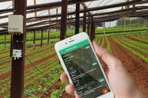 Digitalização da agricultura passa pelo caderno de campo digital