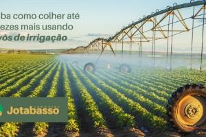 Áreas irrigadas com pivô central podem colher até 3 safras