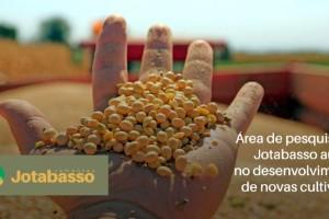 Área de pesquisa da Jotabasso auxilia no desenvolvimento de novas cultivares